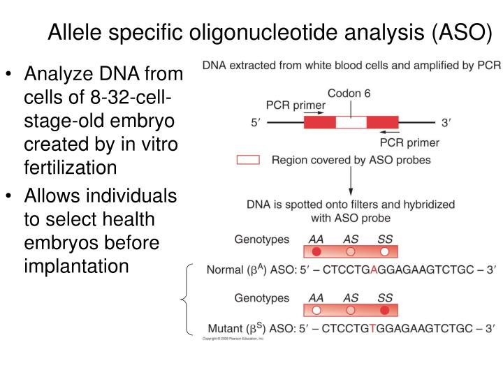 Allele specific oligonucleotide analysis (ASO)