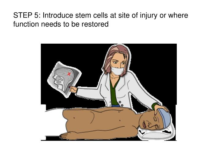 STEP 5: Introduce stem cells at site of injury or where function needs to be restored
