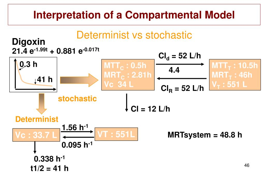 Interpretation of a Compartmental Model