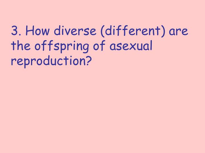 3. How diverse (different) are the offspring of asexual reproduction?