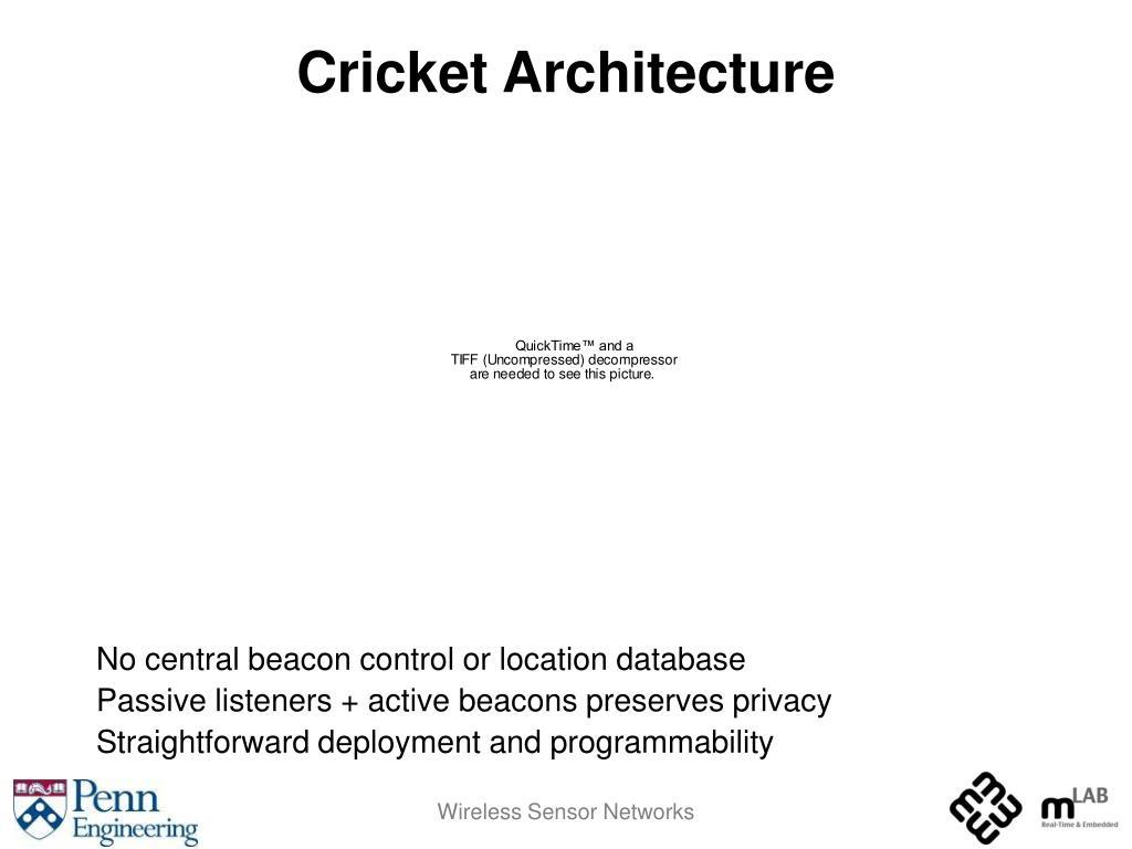 Cricket Architecture