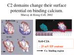 c2 domains change their surface potential on binding calcium murray honig cell 2002