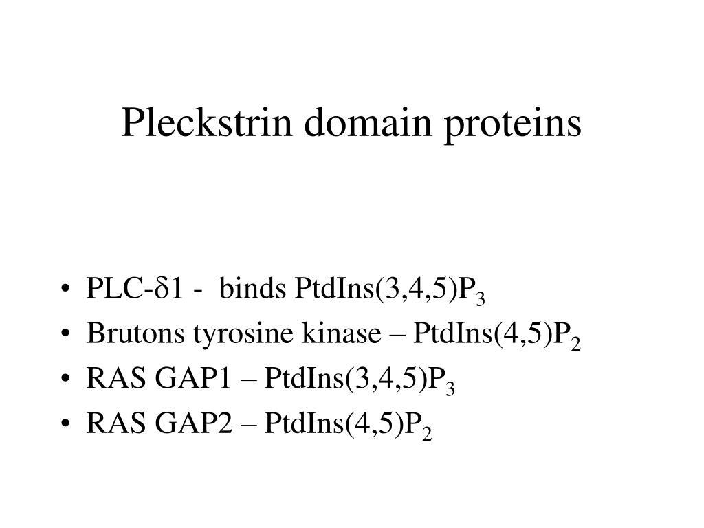 Pleckstrin domain proteins