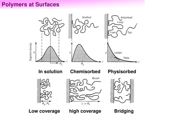 Polymers at Surfaces