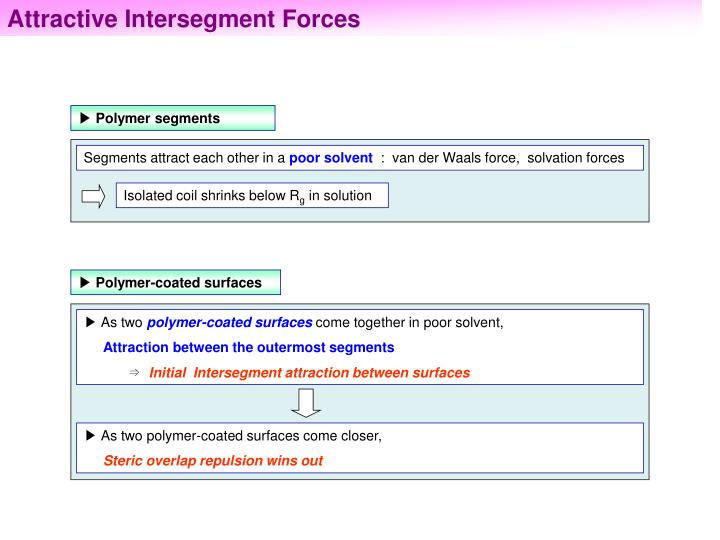 Attractive Intersegment Forces