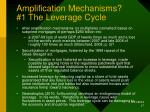 amplification mechanisms 1 the leverage cycle