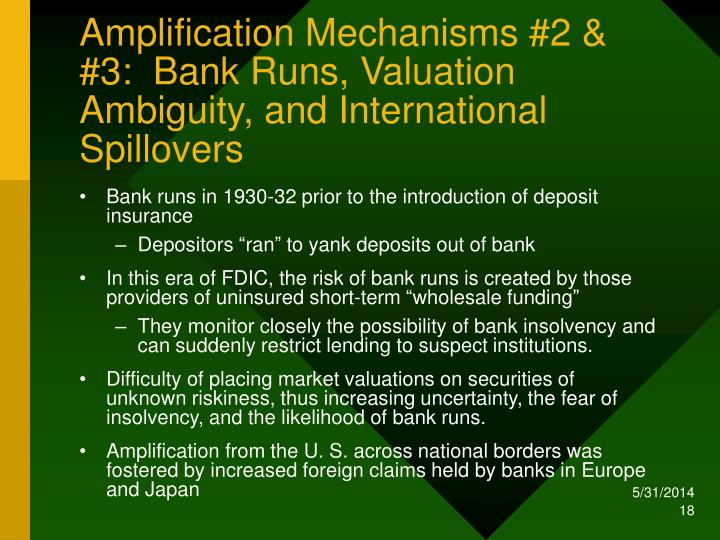Amplification Mechanisms #2 & #3:  Bank Runs, Valuation Ambiguity, and International Spillovers