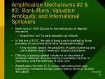 amplification mechanisms 2 3 bank runs valuation ambiguity and international spillovers