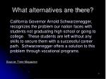 what alternatives are there