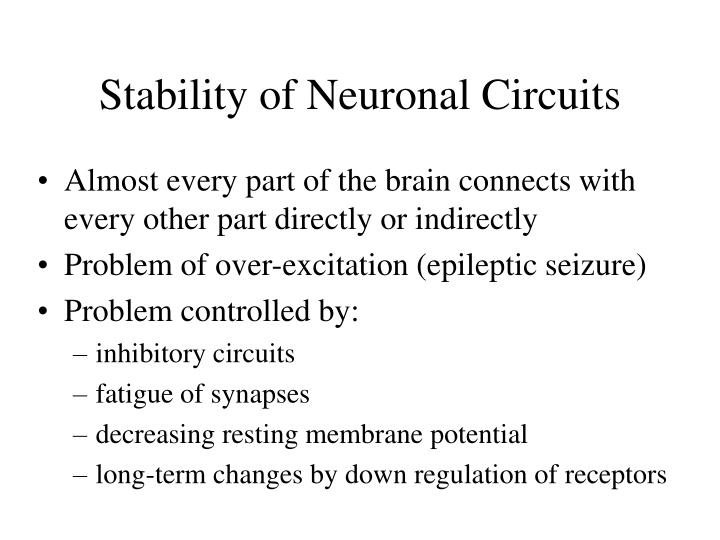 Stability of Neuronal Circuits