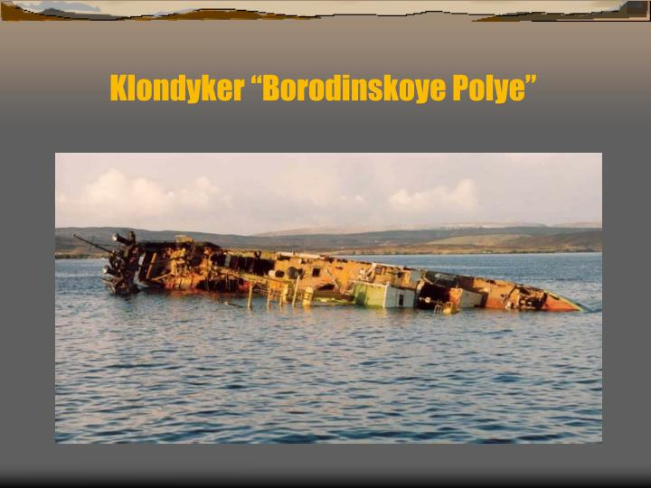 """Klondyker """"Borodinskoye Polye"""""""