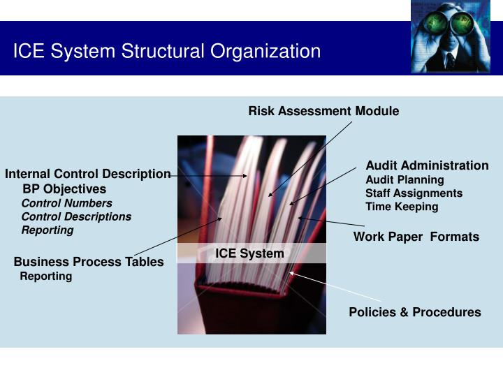 ICE System Structural Organization