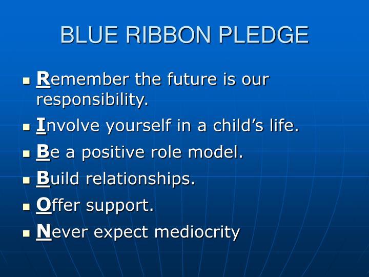 BLUE RIBBON PLEDGE