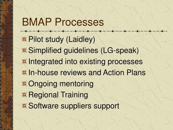 BMAP Processes