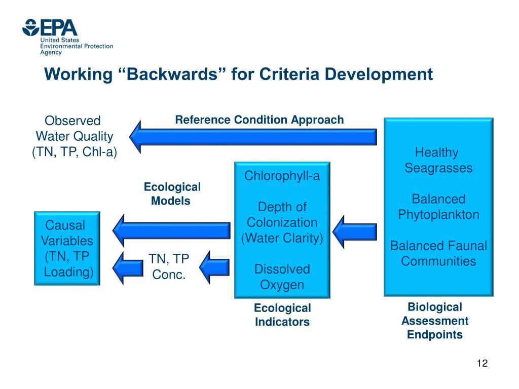 "Working ""Backwards"" for Criteria Development"