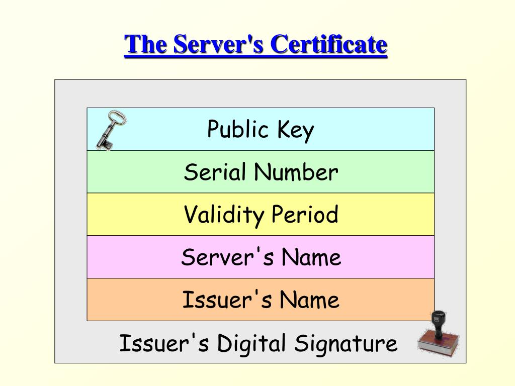 The Server's Certificate