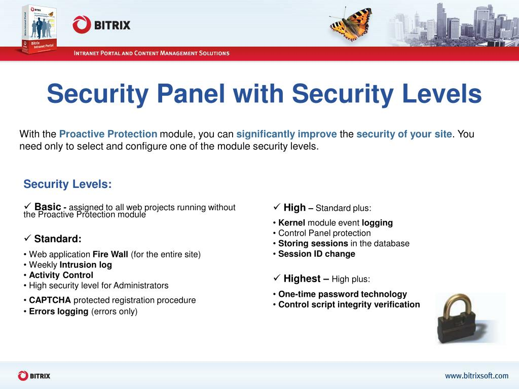 Security Panel with Security Levels