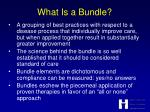 what is a bundle