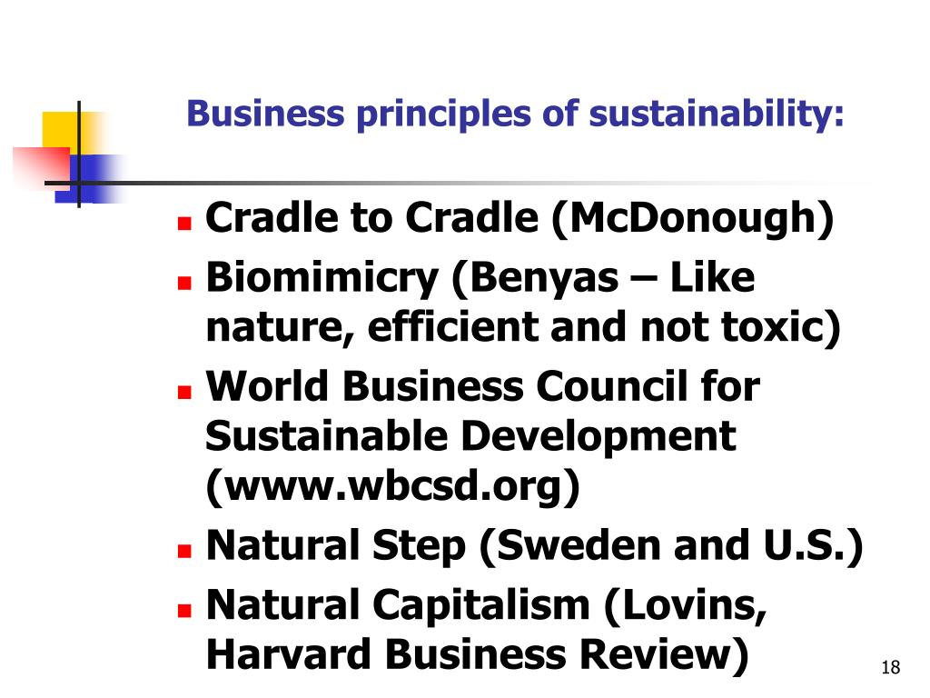Business principles of sustainability: