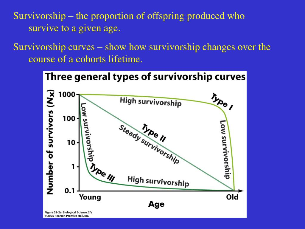 Survivorship – the proportion of offspring produced who survive to a given age.