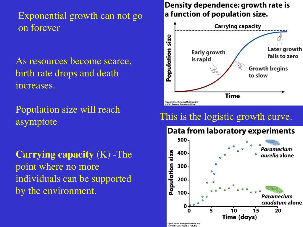 Exponential growth can not go on forever