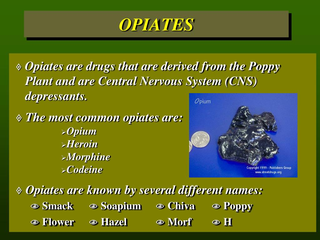 Opiates are drugs that are derived from the Poppy 	Plant and are Central Nervous System (CNS) 	depressants.
