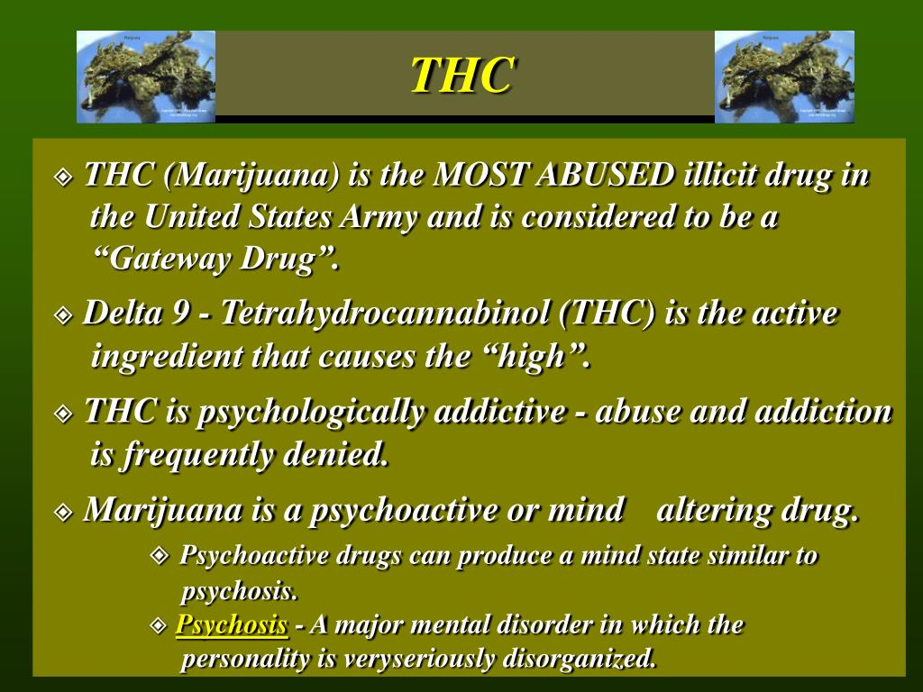 "THC (Marijuana) is the MOST ABUSED illicit drug in 	the United States Army and is considered to be a 	""Gateway Drug""."