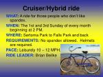 cruiser hybrid ride