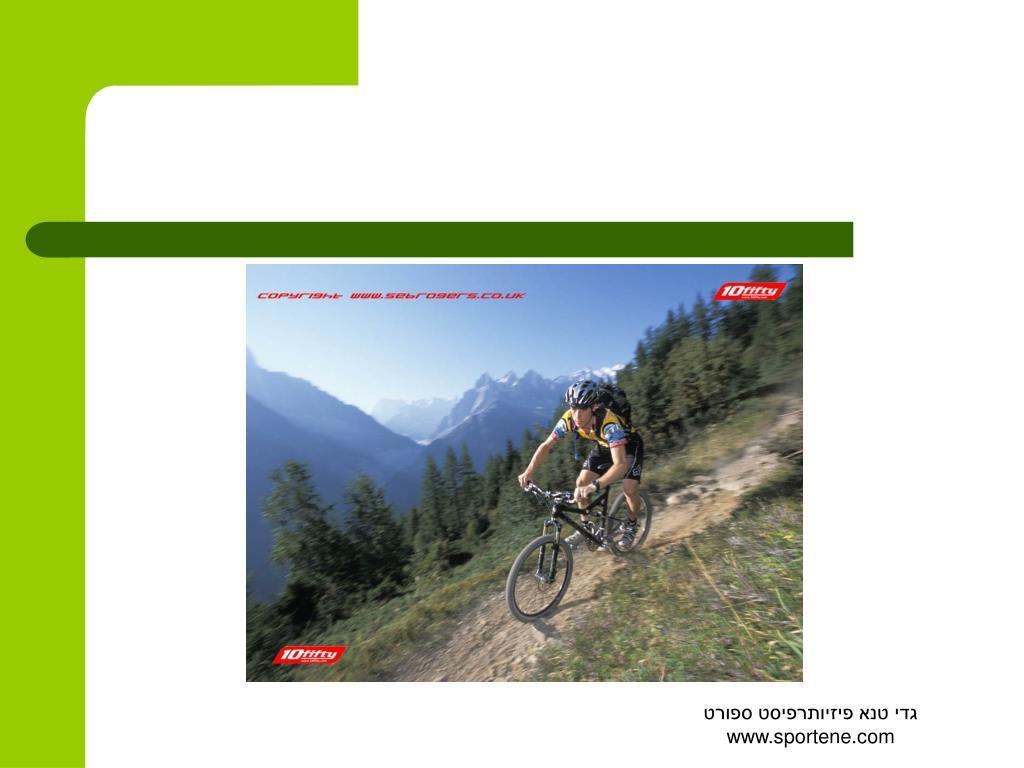 גדי טנא פיזיותרפיסט ספורט www.sportene.com