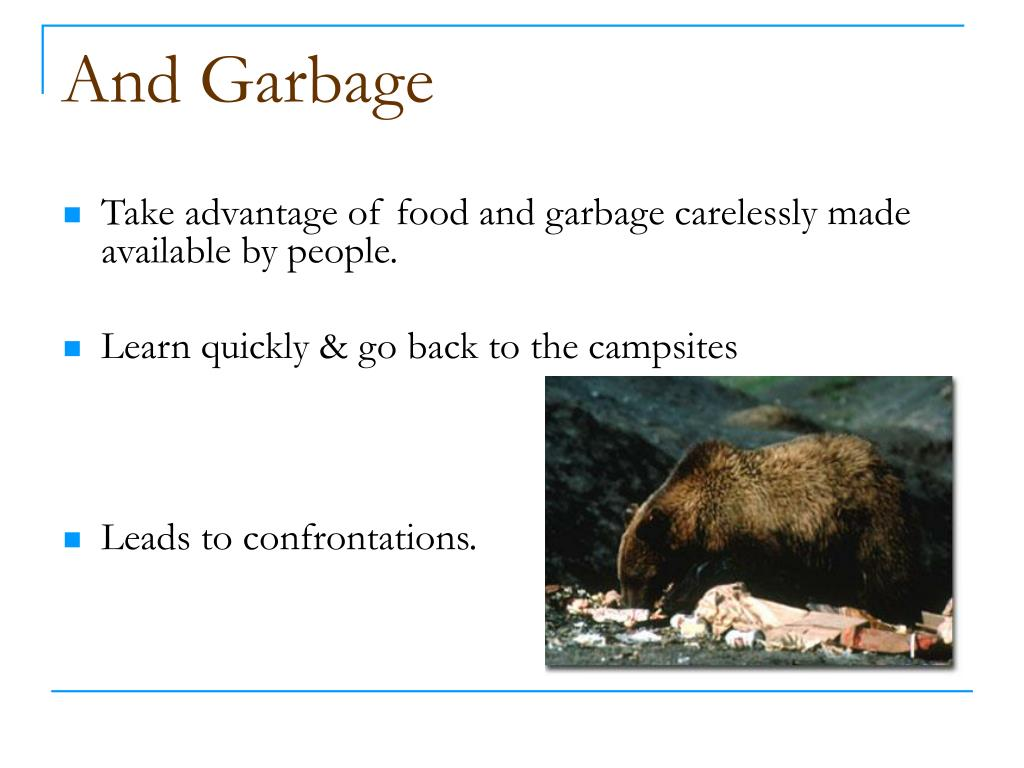 And Garbage