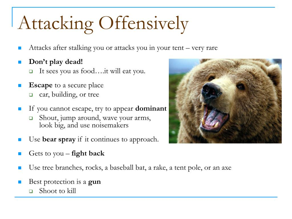 Attacking Offensively