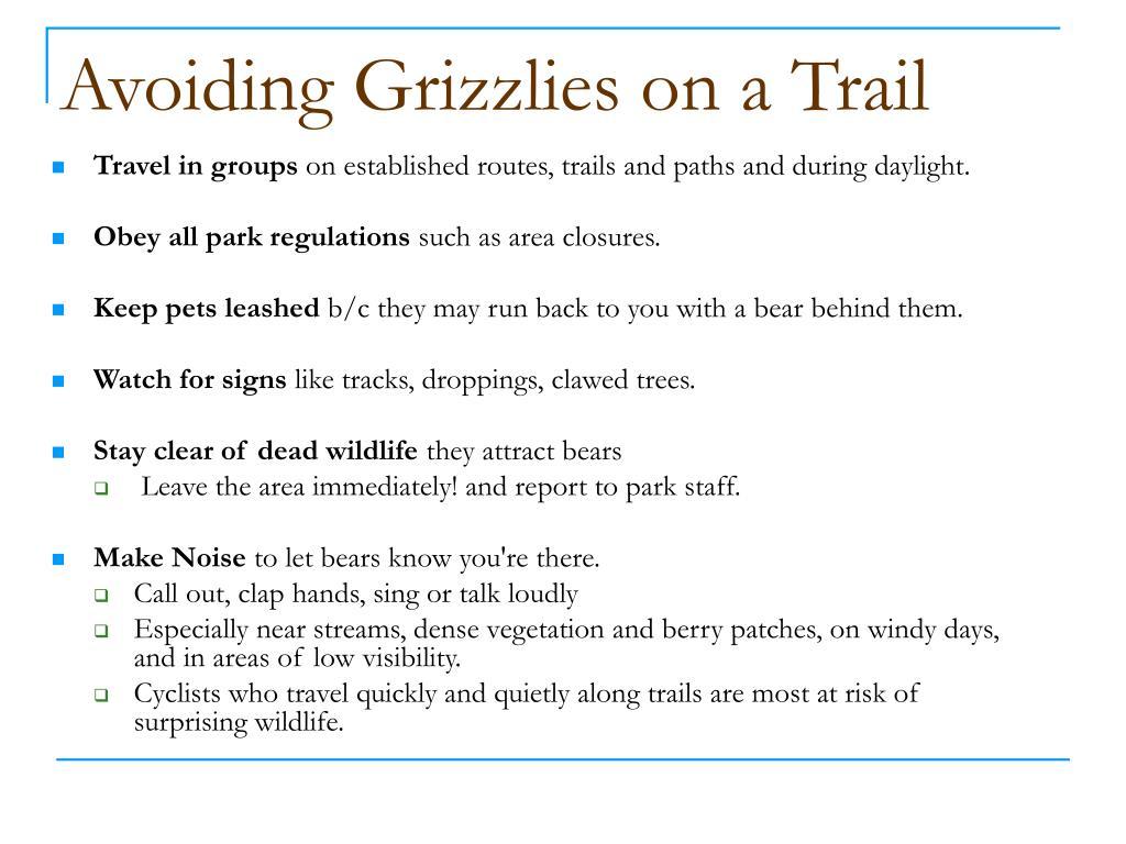 Avoiding Grizzlies on a Trail