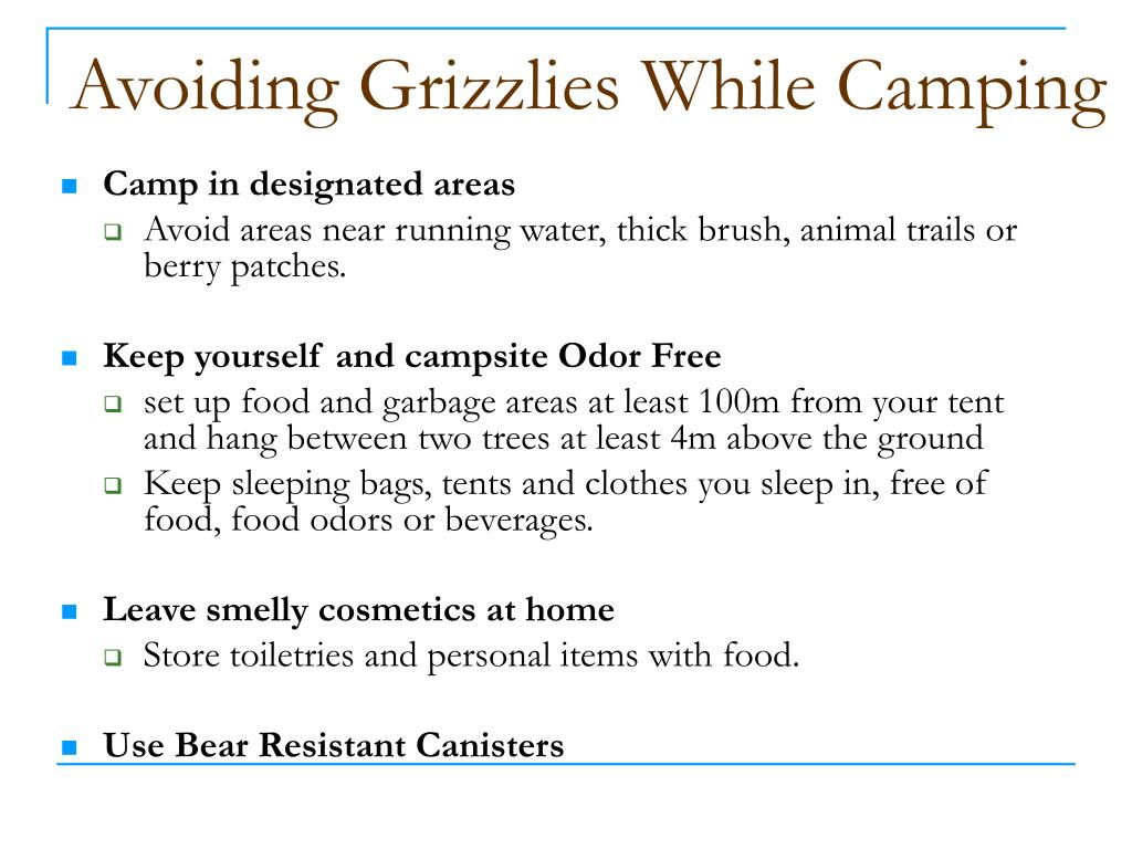 Avoiding Grizzlies While Camping