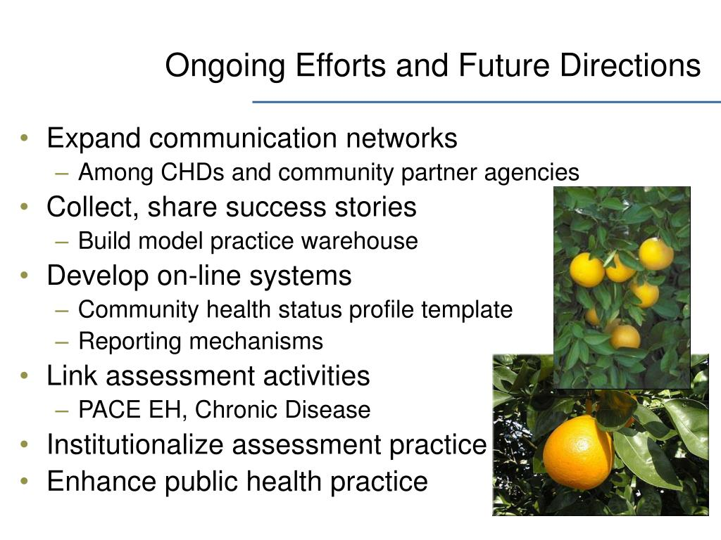 Ongoing Efforts and Future Directions