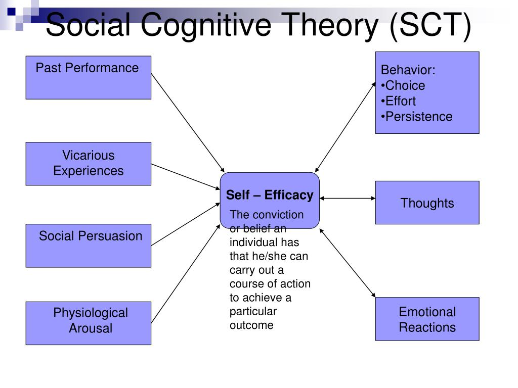 Social Cognitive Theory (SCT)