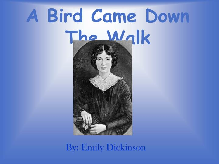 ? a bird came down the walk by emily dickinson essay For the love of fine words welcome to between the lines this blog is dedicated to the discussion of the art of writing in its many forms thanks for.