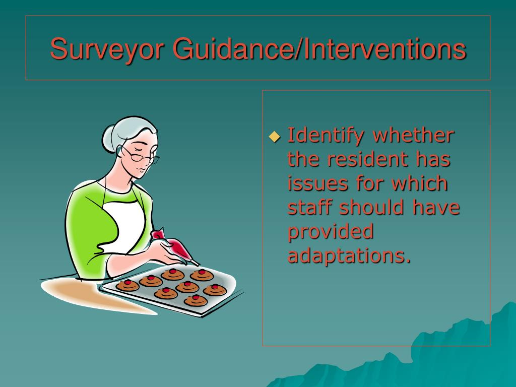 Surveyor Guidance/Interventions