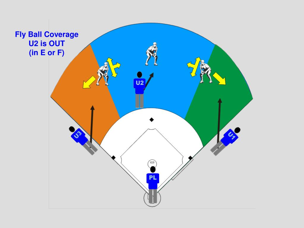 Fly Ball Coverage