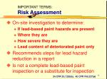 important terms risk assessment