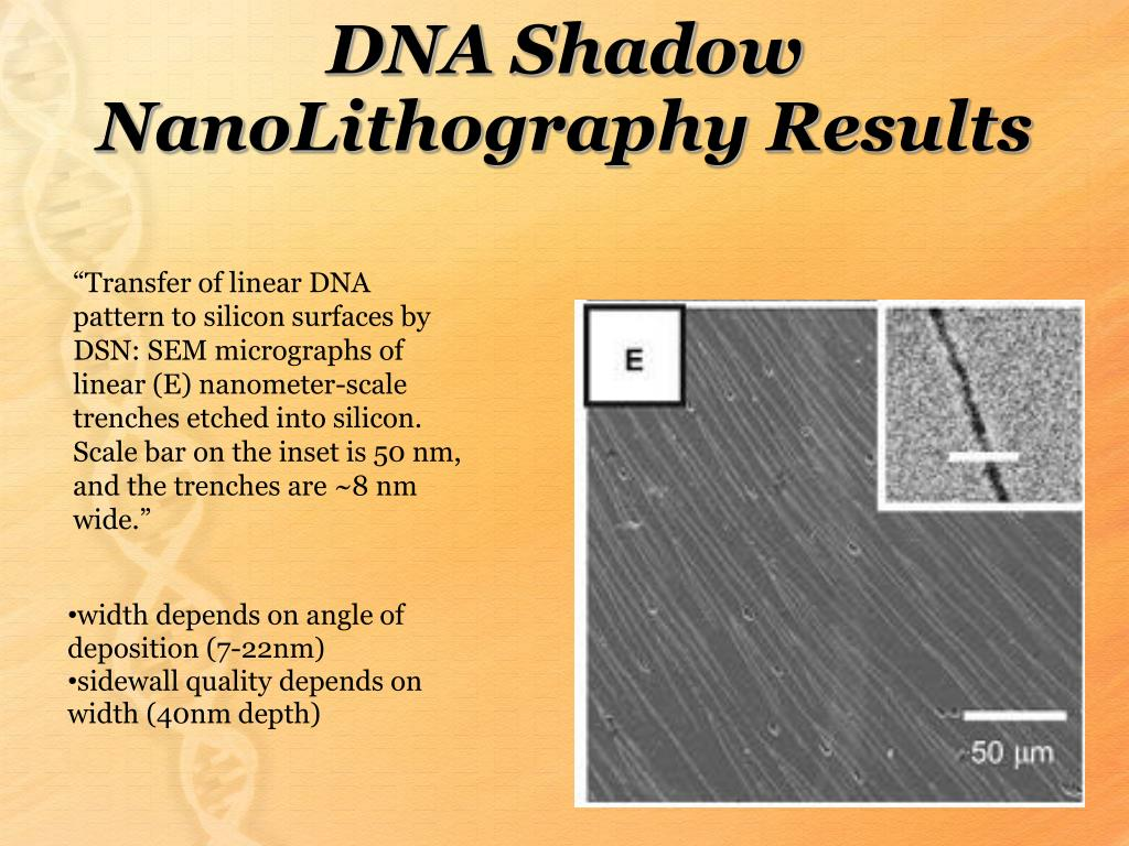 DNA Shadow NanoLithography Results