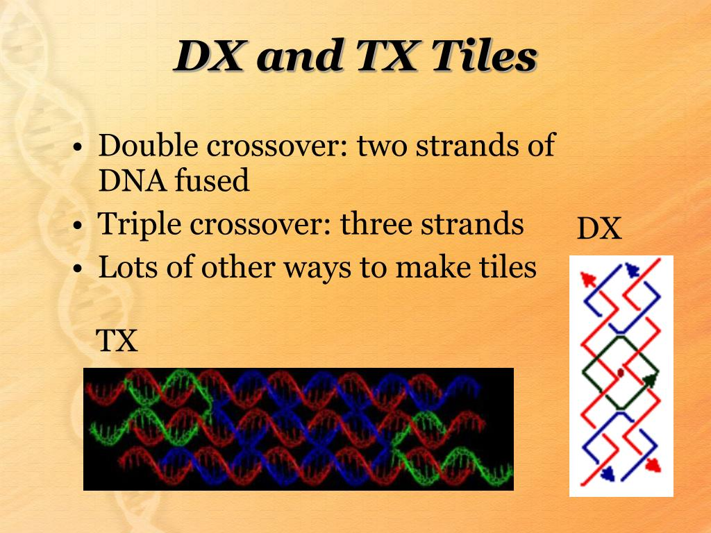 DX and TX Tiles