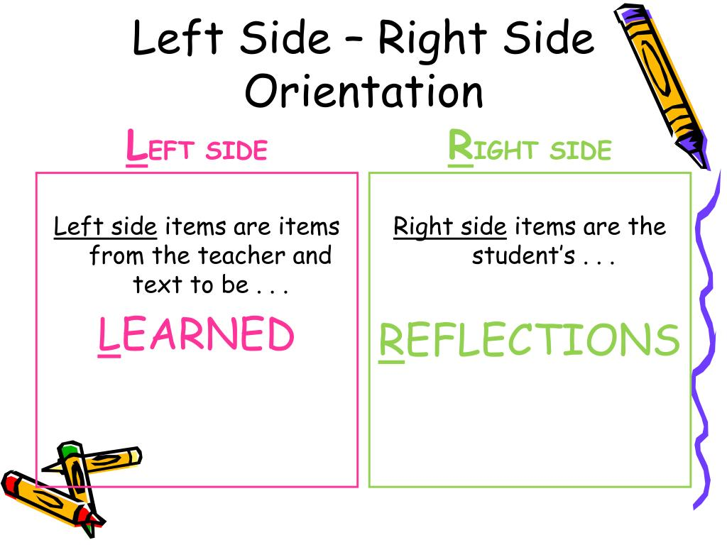 Left Side – Right Side Orientation