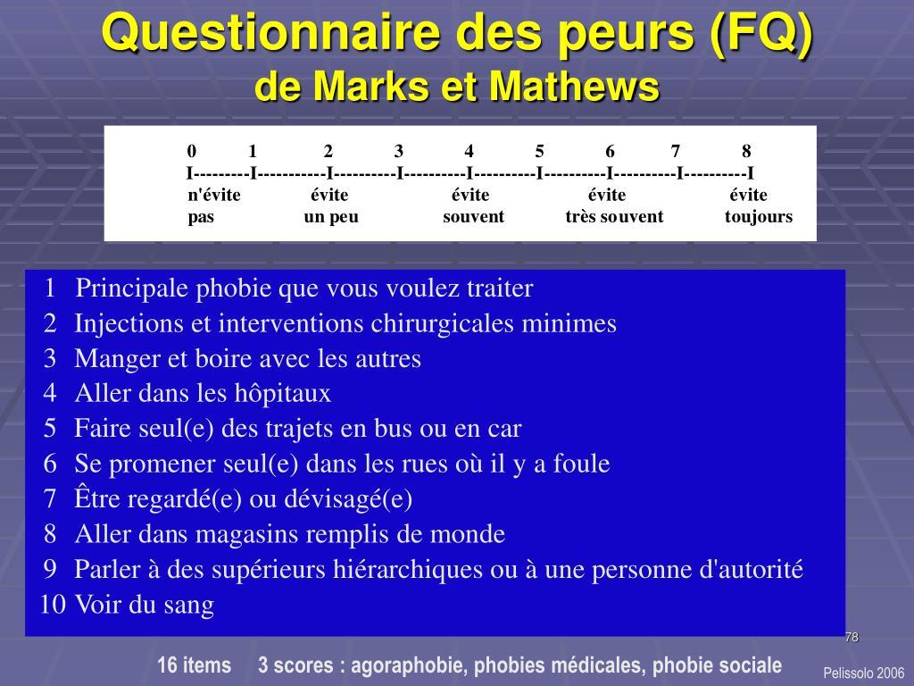 Questionnaire des peurs (FQ)