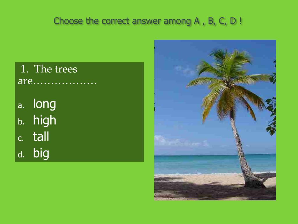 Choose the correct answer among A , B, C, D !