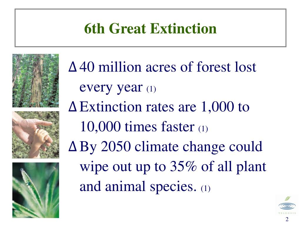 6th Great Extinction