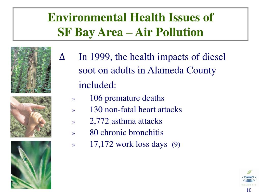 Environmental Health Issues of