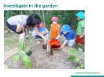 investigate in the garden