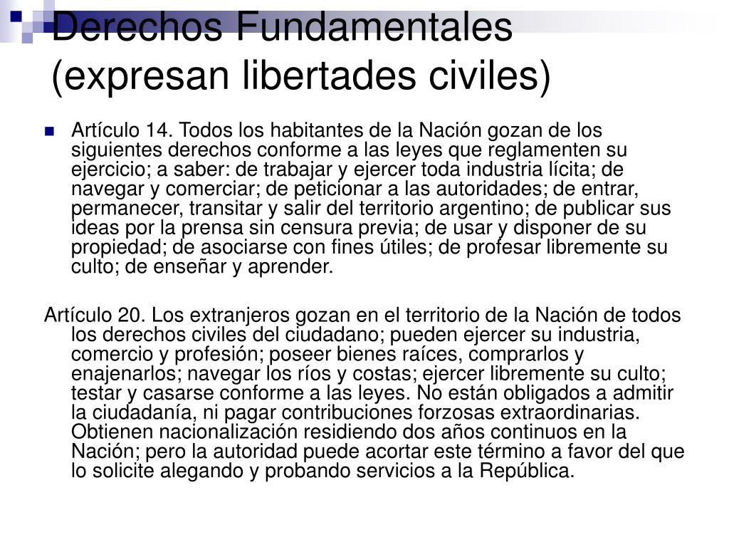Derechos Fundamentales (expresan libertades civiles)