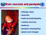brain necrosis and paralysis