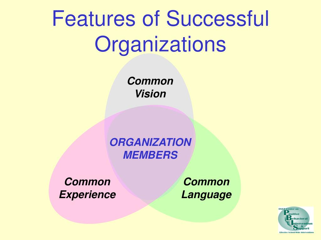 Features of Successful Organizations